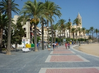Sitges palm tree lined promenade