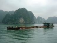 commercial-boat-halong-bay